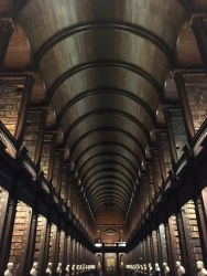 The ceiling of the Trinity College Library, which houses the Book of Kells and many great Irish works. Dublin, Leinster, Ireland.