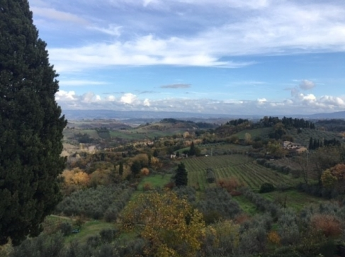 The vineyards of the Tuscan countryside. Outside of San Gimignano, Tuscany, Italy